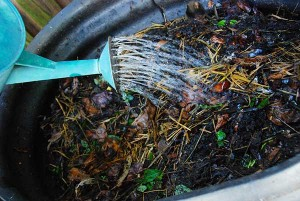 watercompost